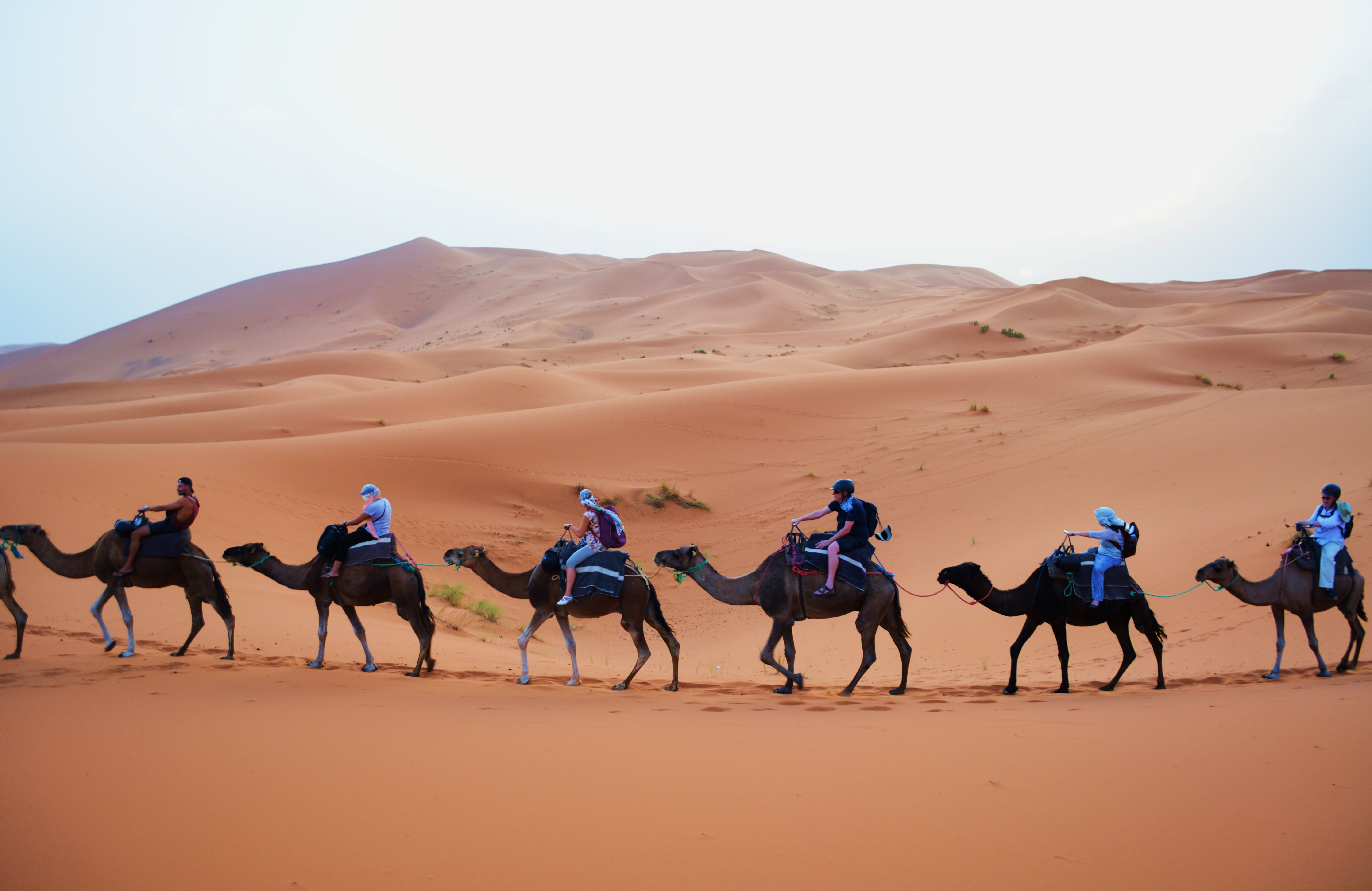 A Night Under The Stars In The Sahara Desert