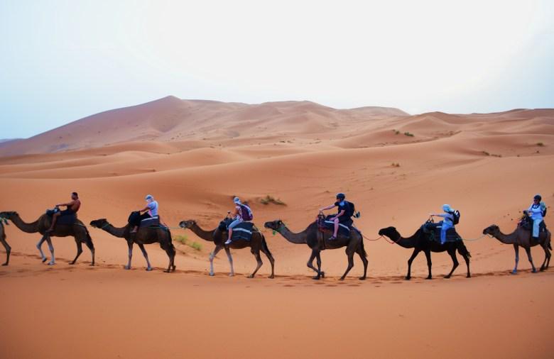 Nikon - Summer 2014 and Morocco 424