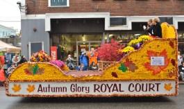 Autumn Glory 2014 148